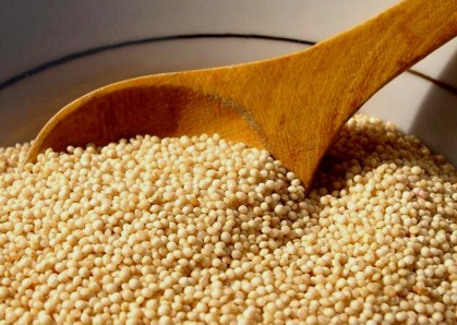 Resultado de imagen para semillas de amaranto
