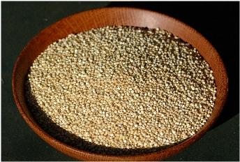 como el alimento sagrado de antiguas culturas andinas parte de las