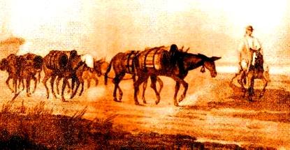 Resultado de imagen para arrias de mulas en argentina en el siglo XIX