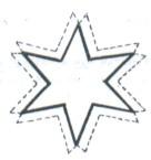 Convertida En Estrella De 6 Puntas De    Pico Simple